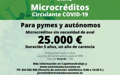 La Junta aprueba una línea de microcréditos para Pymes y Autónomos por la crisis del Covid-19